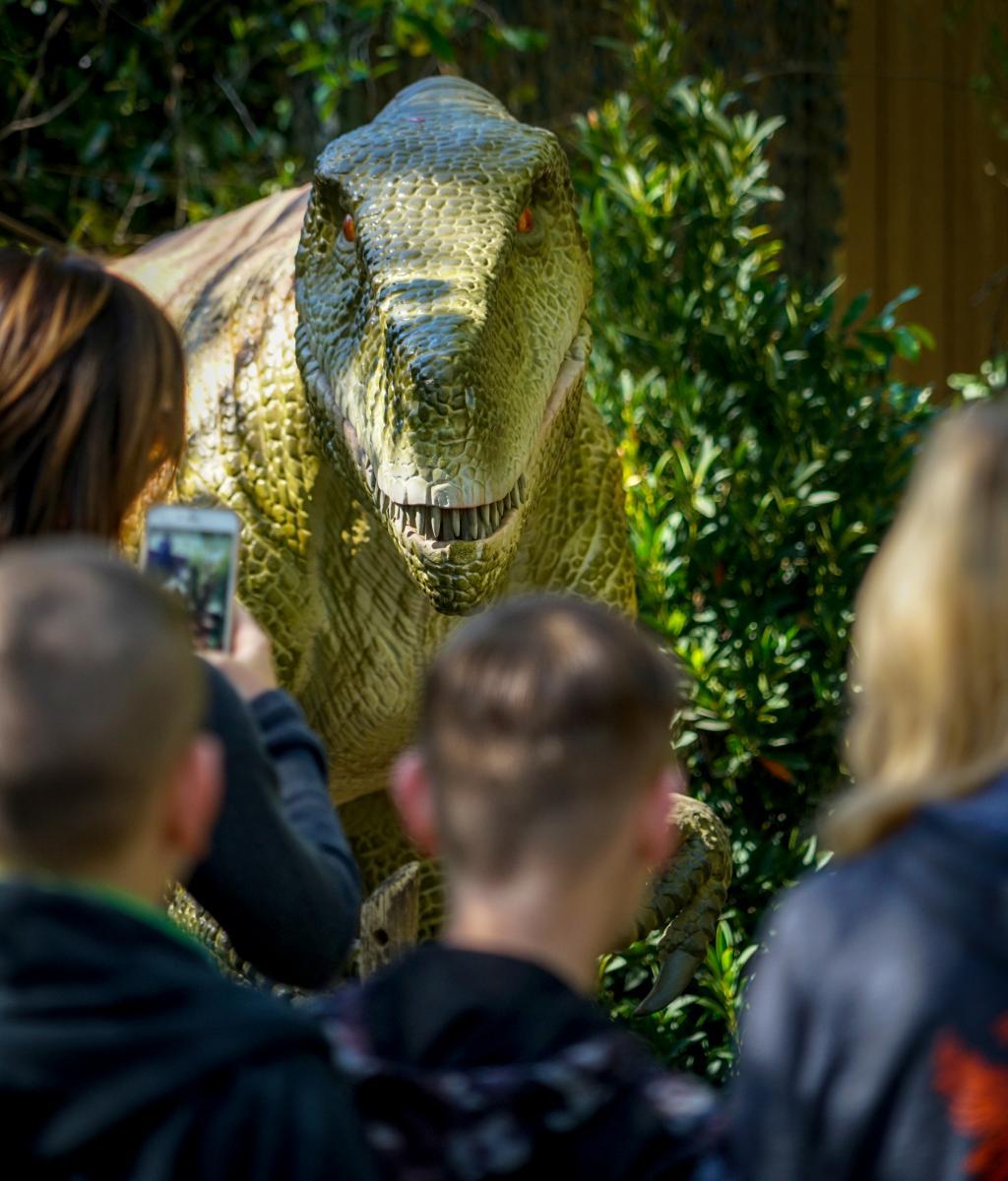 Dinosaur Invasion | South Florida Science Center and Aquarium